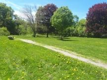 Webster Fall Park
